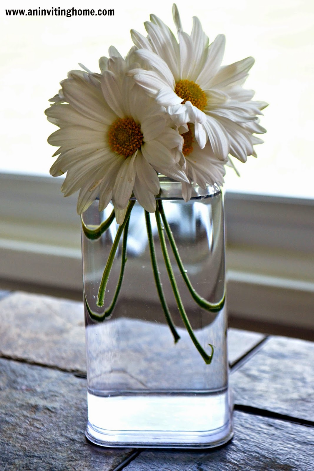 make a small vase out of old soap dispenser