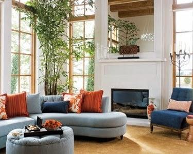 Planta de interior para decorar salón