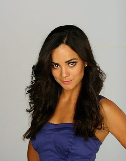 Alice Braga Hairstyle 26