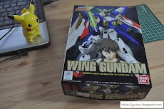NG Gundam Wing Kits!