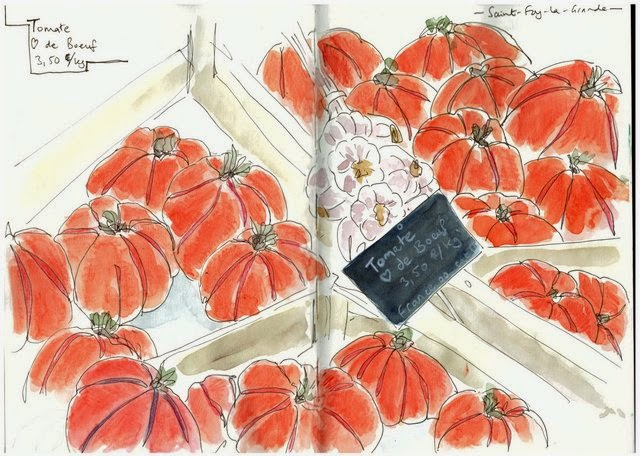 Tomatoes and garlic St Foy-la-grande market sketch