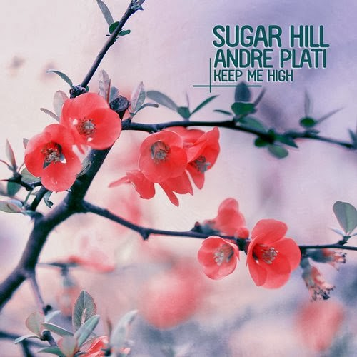 Andre Plati & Sugar Hill - Keep Me High