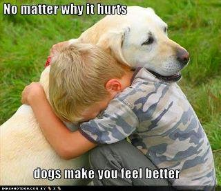 DOGS MAKE YOU FEEL BETTER