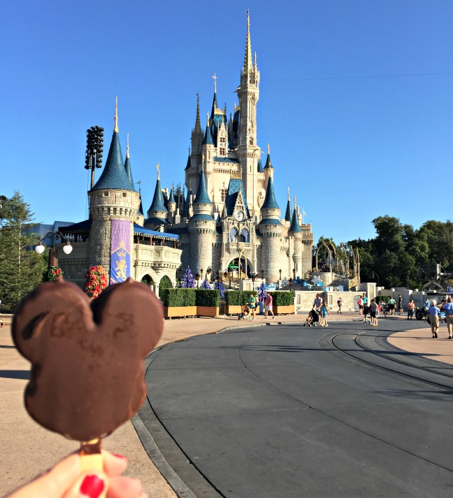 Disney World Recap - Magic Kingdom