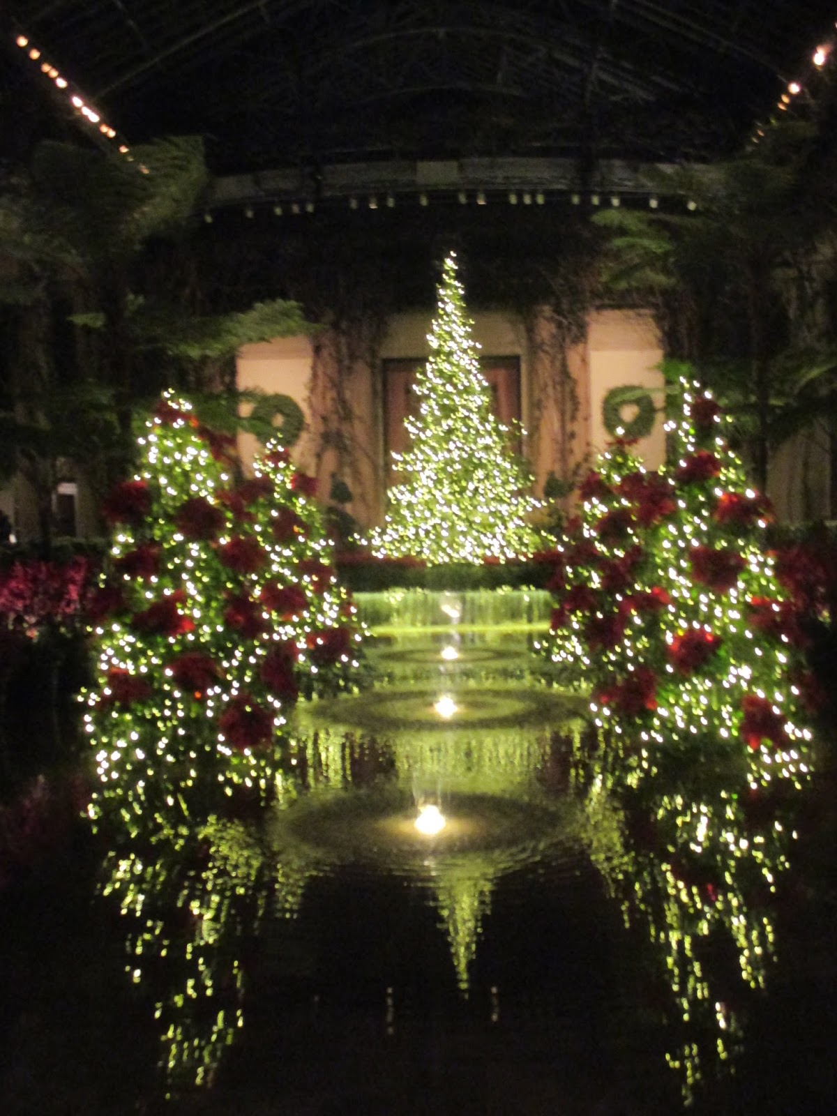 Garden Dream: Fantastic Illuminations at Longwood Gardens, Philadelphia