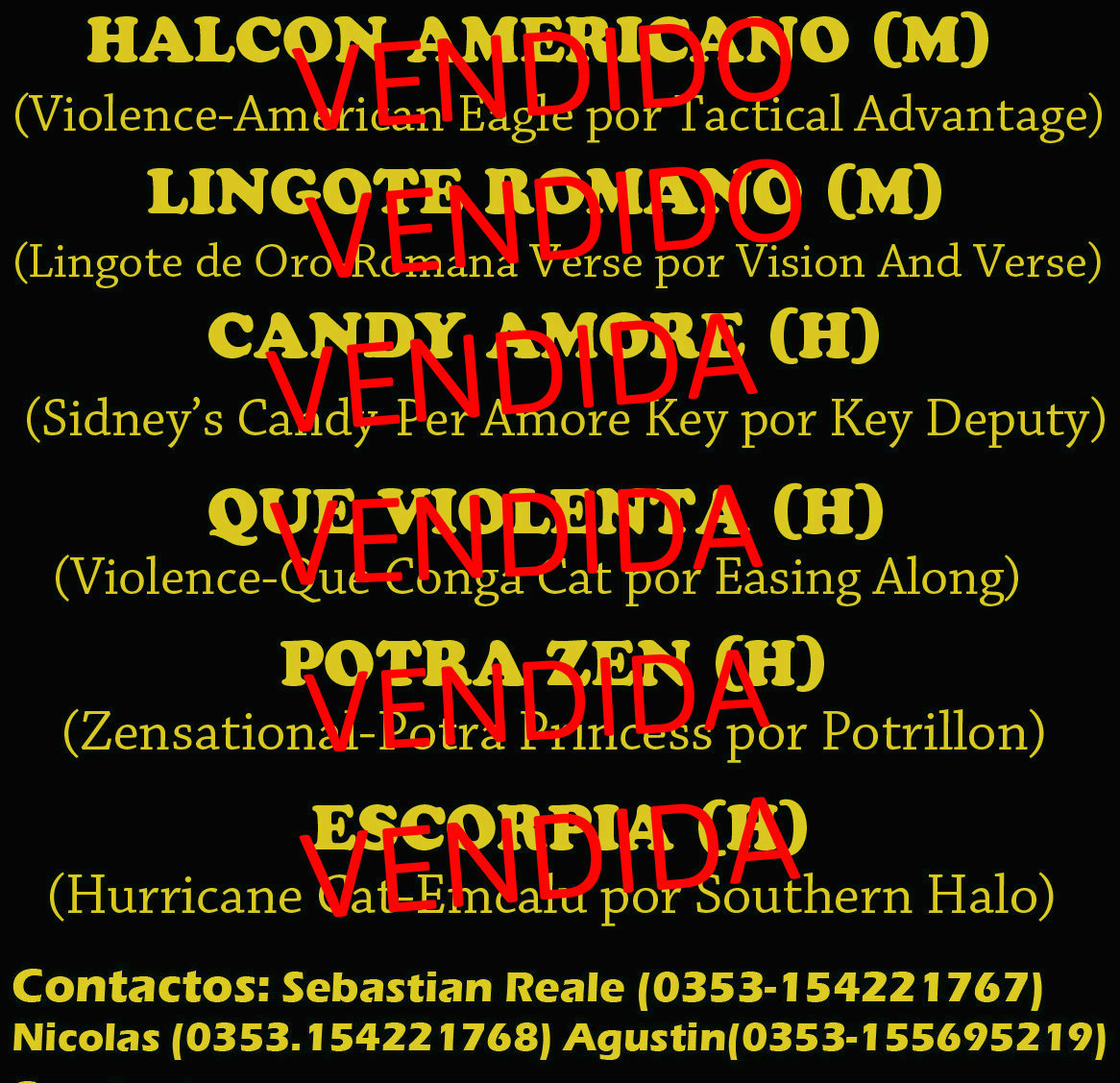 HS EL ARROYO 2 PR