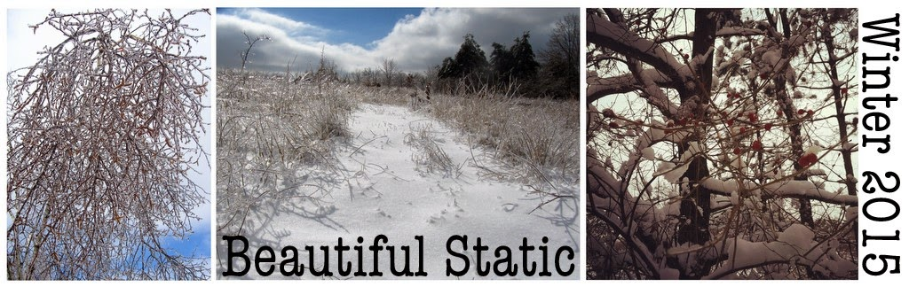 Beautiful Static