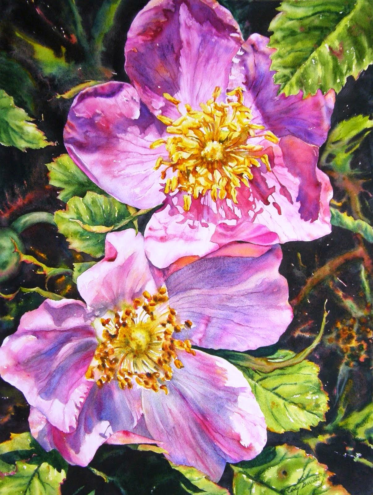 Sunny Alberta - Roses #12
