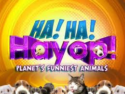 Watch Ha Ha Hayop Online