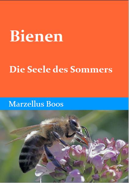 Bienen  Die Seele des Sommers