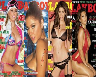 Playboy Celebrities, 2011 Playboy Celebrities