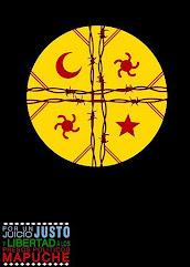 POR UN JUICIO JUSTO...Y POR LA LIBERTAD DE NUESTR@S PRES@S POLÍTICOS MAPUCHE!!!