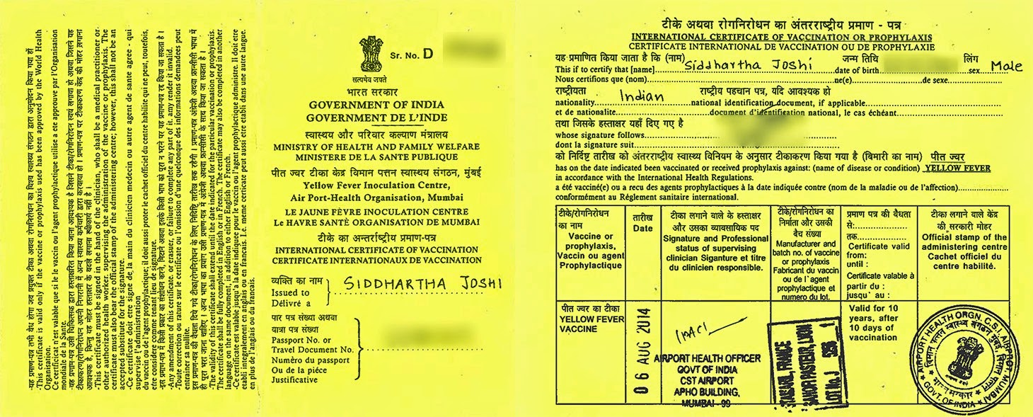 Yellow Fever Vaccination in Mumbai, India