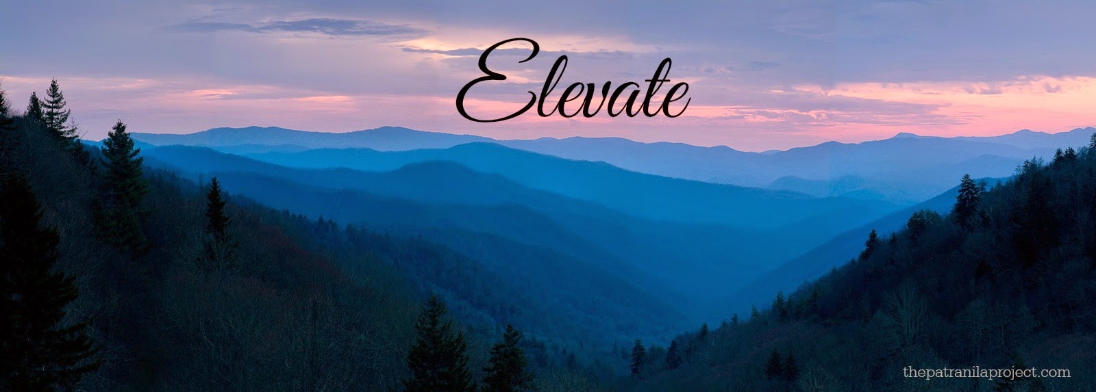 Elevate: Word of the Year 2015