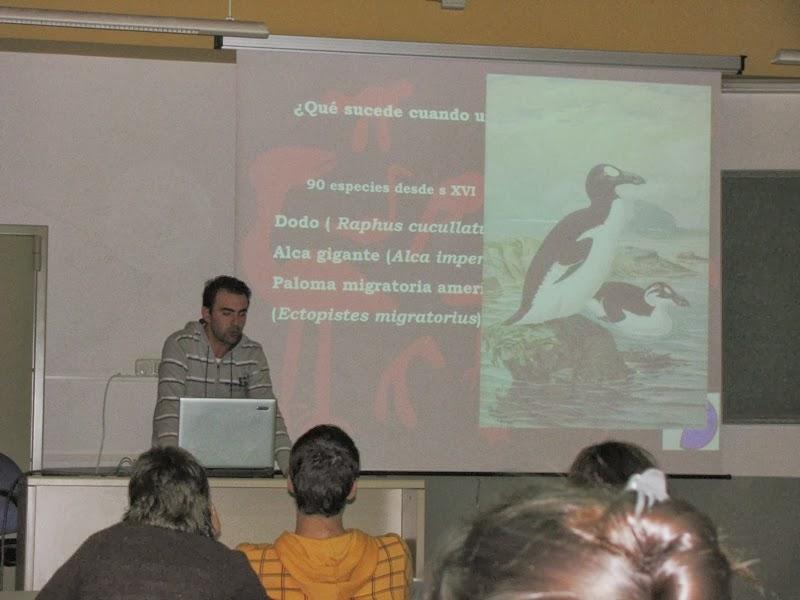Curso de Iniciación a la Ornitología 2008. Organiza SEO-Sevilla. Clases  teóricas