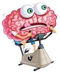 How Exercise Affects the Brain