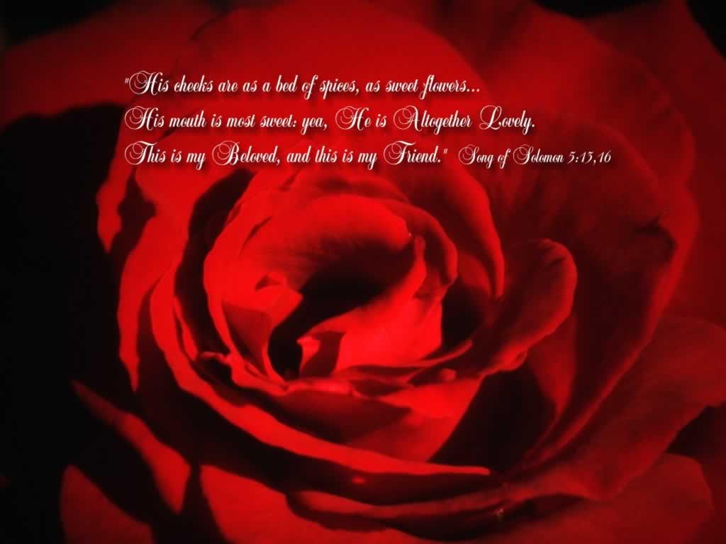 http://4.bp.blogspot.com/-m12LKkEEK5g/T5ZKIumQpYI/AAAAAAAAAIw/Slqy-bfqPdw/s1600/free-christian-computer-wallpaper-my-beloved_1024x768_29068.jpg