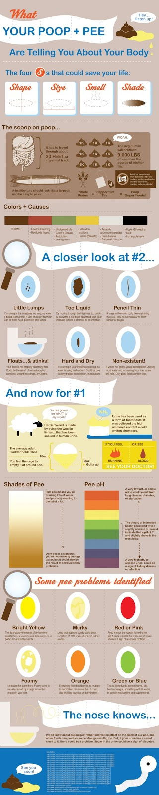 poop and pee infographic