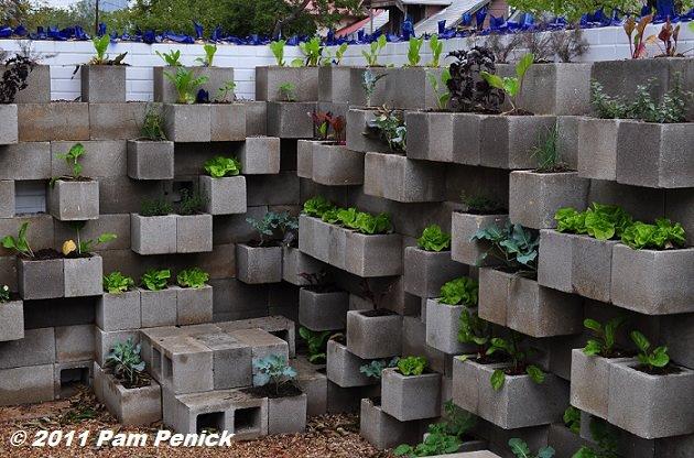 Cinder Block Wall Backyard : Universo Vivo Un huerto urbano en tu terraza con materiales