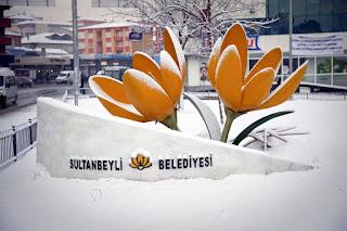Sultanbeyli Belediyesi Logo İstanbulensis Çiçeği