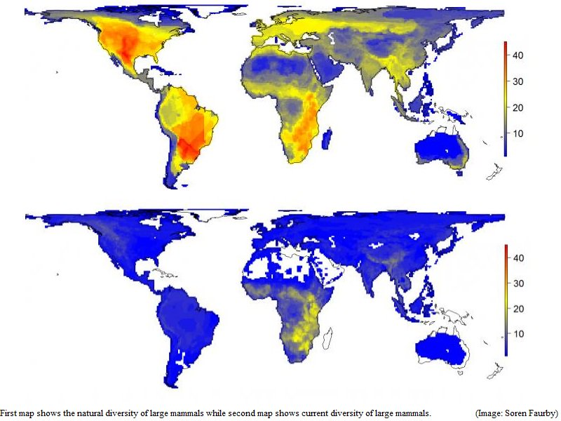Natural versus current diversity of large mammals