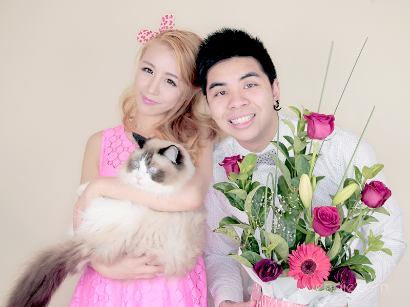Happy Valentines Day The Wonderful World Of Wengie