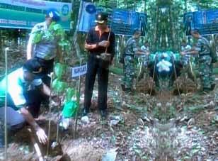 Senkom Kotabaru Tanam Pohon bersama Bupati