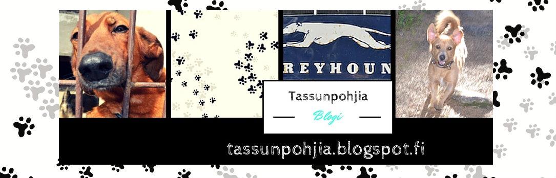 Tassunpohjia-blogi