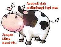 australia lindungi sapi | indonesia gagal lindungi tki di arab| selamatkan 28 tki lain di daftar pancung arab saudi