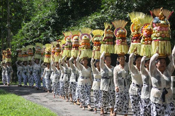 The Ceremony of Alas Kedaton Temple - Bali temple anniversary, Bali attractions