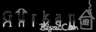 Gürkan Bilgisu - Kişisel Ağ Günlüğü