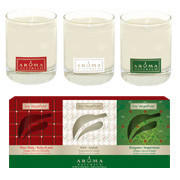 http://www.aromanaturals.com/collections/holiday/products/holiday-soy-vegegure-glass-votive-set-3pc