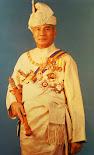Sultan Perak Ke 34 (1984 - 2014)