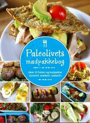 http://paleolivet.blogspot.dk/p/e-bog-paleo-madpakken.html