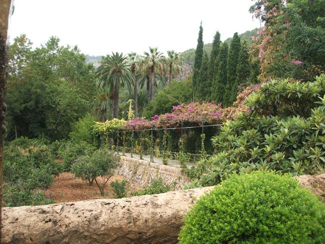 Jardines de alfabia en mallorca parte i paisaje libre - Imagenes de jardines con palmeras ...