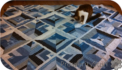 ProsperityStuff Kitty examines Shirt Quilt