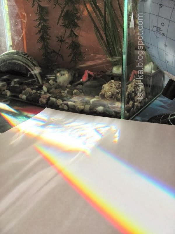 радуга через аквариум