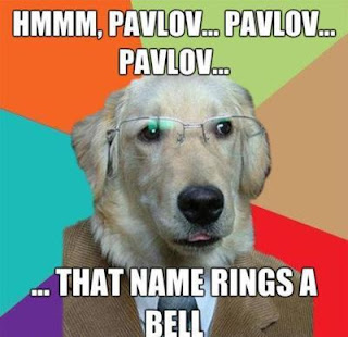 Name Of Pavlov S Dog