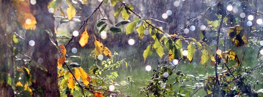 Couverture facebook pluie de novembre 05