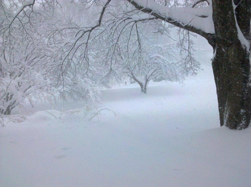 Shirat Devorah: The Spiritual Meaning of Snow