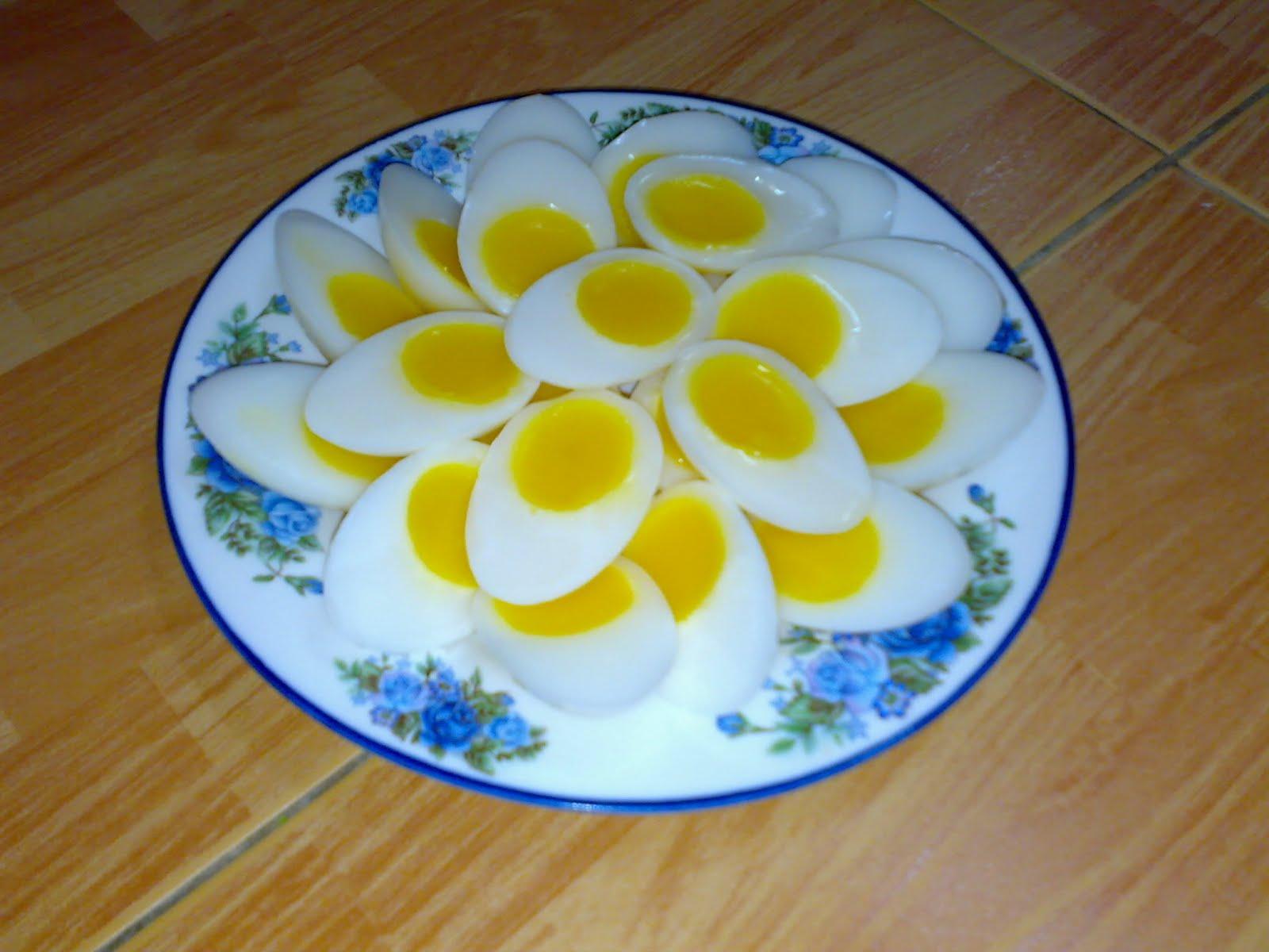 agar agar telur