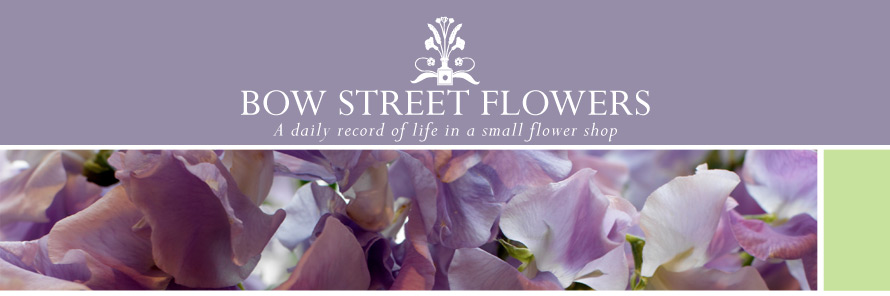 Bow Street Flowers - A daily record of life in a small flower shop