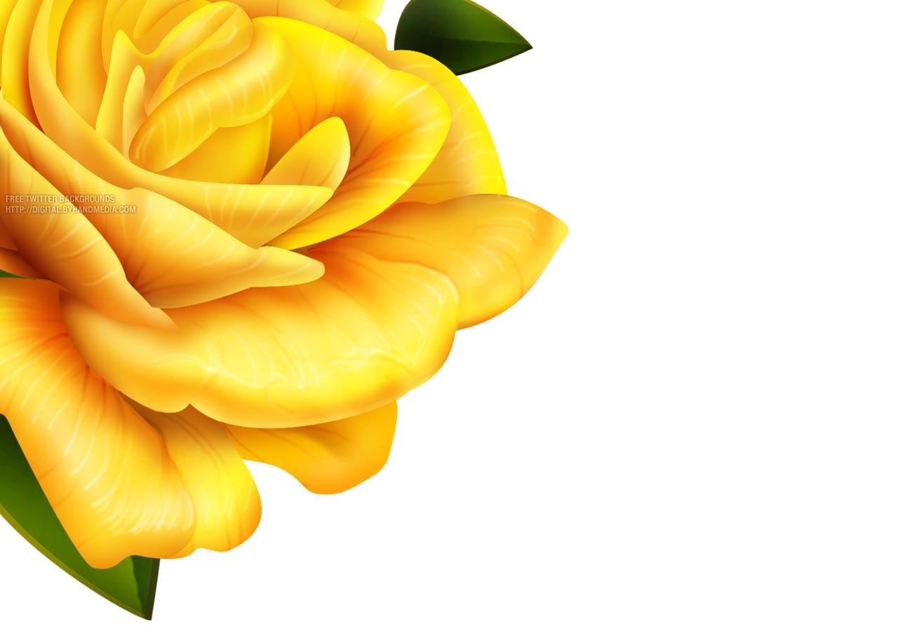 Yellow Flower Border Design High Resolution Widescreen 1300 X 900