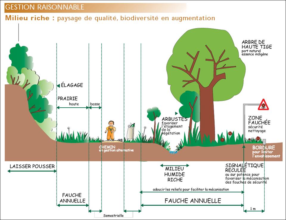 Cfppa des pays d 39 aude zero phyto la gestion diff renci e for Importance des espaces verts