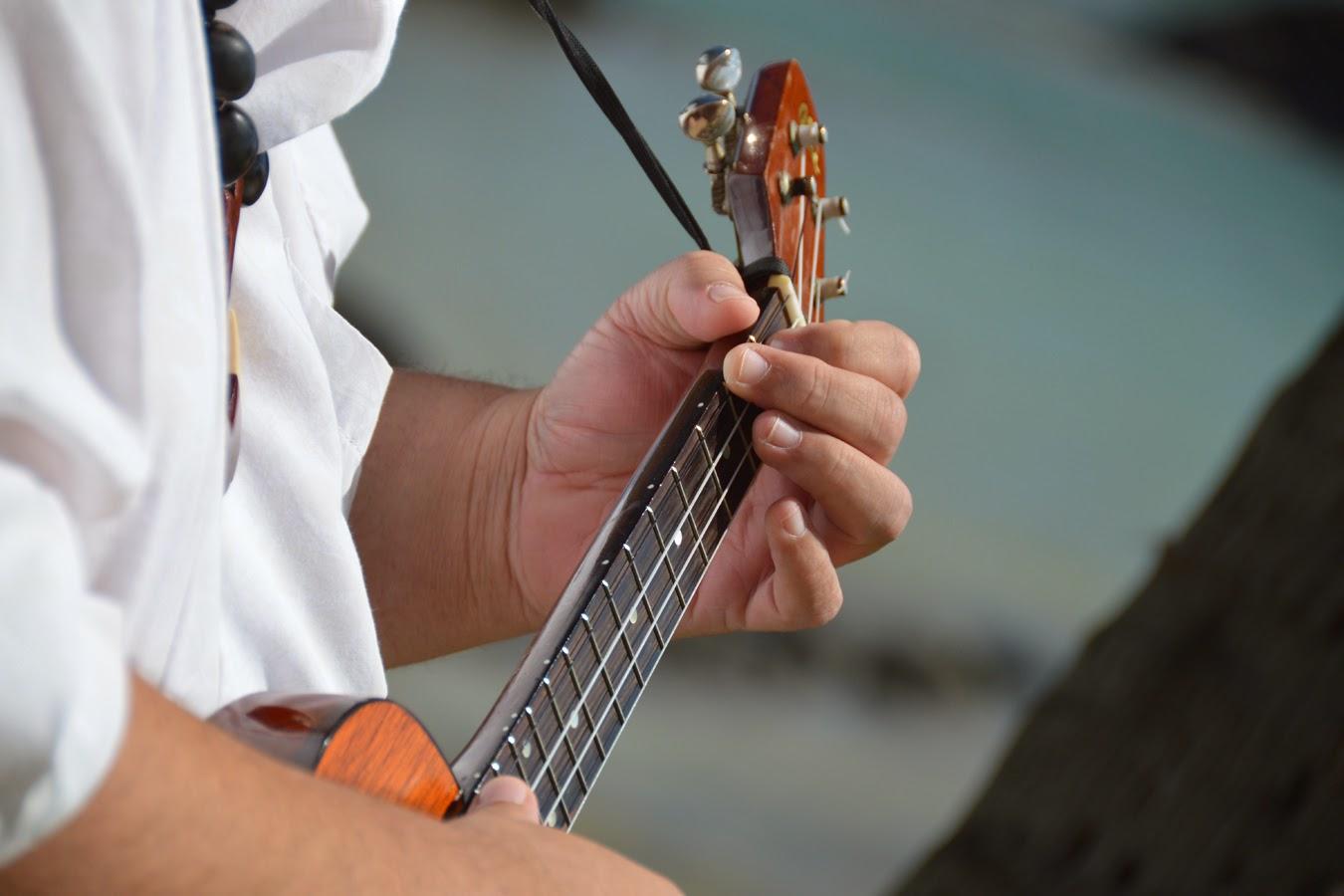 Honolulu Musicians