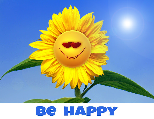 Think Positive  Be Happy Sunflower