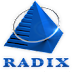Radix Offcampus Drive For 2012,2013 Freshers on September 2014
