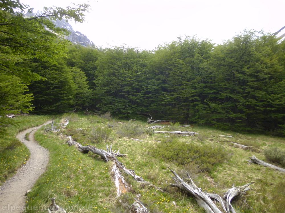 Valle río Ascencio, Torres del Paine