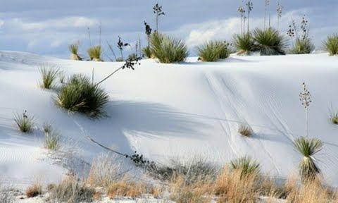 Najveće pustinje na svetu  Bela-pustinja