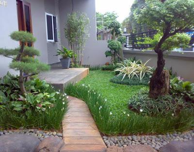 TUKANG TAMAN JAKARTA | AHLI TAMAN | TAMAN MODERN